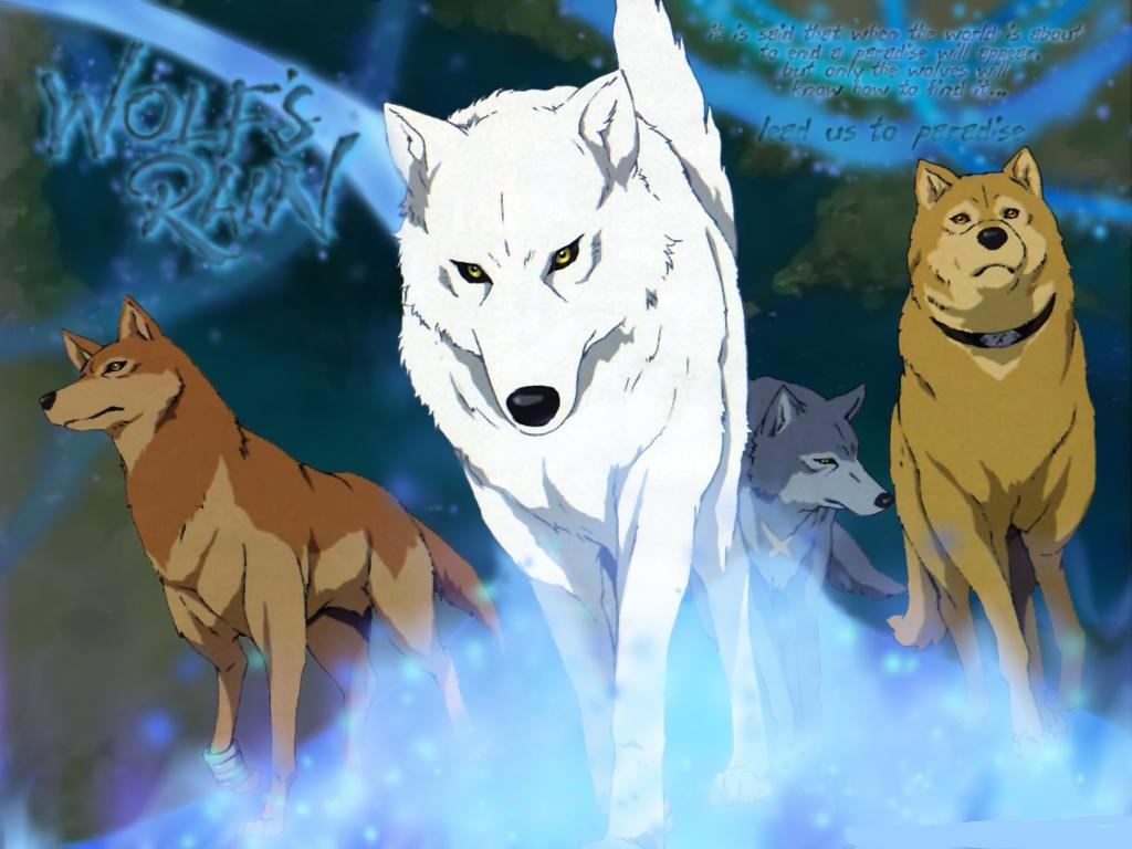 Wolfs Rain Folge 1